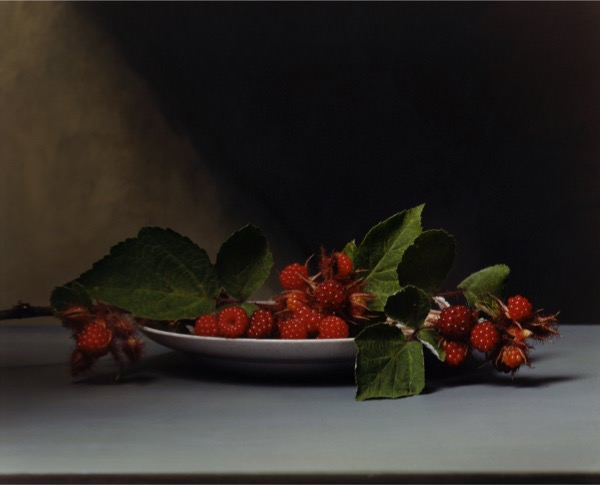 Image: Sharon Core, Early American – Wild Raspberries, 2008, chromogenic print, 14 ½ x 18 inches, Collection Lannan Foundation