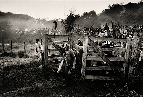 The Takeover By Landless Peasants Sebastiao Salgado