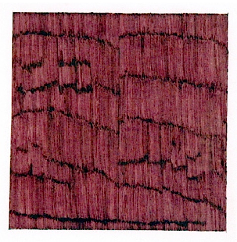 Untitled, 2002-03 (fuschia) by roger walker
