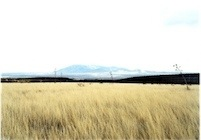 Victoria Sambunaris, Untitled (Border view south from grasslands), Hereford, Arizona 2010